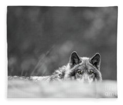 Timber Wolf Picture - Tw420 Fleece Blanket