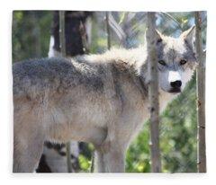 Timber Wolf Fleece Blanket