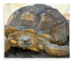 Timothy The Giant Tortoise Fleece Blanket