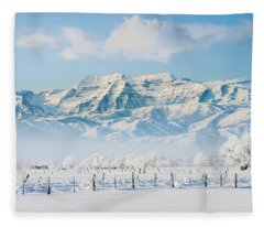 Timp In Winter Fleece Blanket
