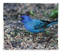 Tiny Indigo Bunting Fleece Blanket
