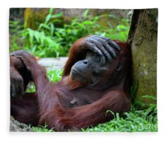Tired Female Orangutan Ape Rests Against Tree With Hand On Her Head Fleece Blanket