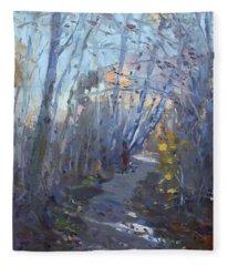 Trail In Silver Creek Valley Fleece Blanket