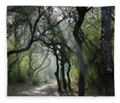 Trail Of Light Fleece Blanket
