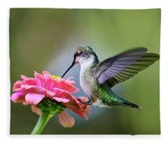 Tranquil Joy Hummingbird Square Fleece Blanket