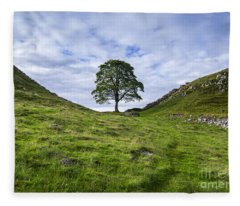Tree At Sycamore Gap Fleece Blanket