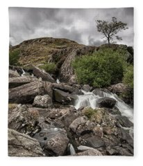 Tree In Snowdonia Fleece Blanket