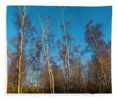 Trees And Blue Sky Fleece Blanket