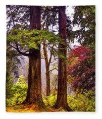 Trees In Autumn Glory. Scotland Fleece Blanket