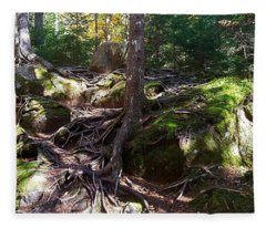 Trees - Mont Tremblant National Park Fleece Blanket