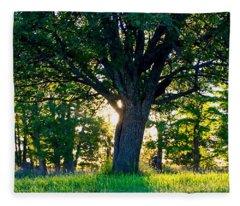 Treescape Fleece Blanket