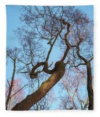 Treetops_risinguptothesky Fleece Blanket