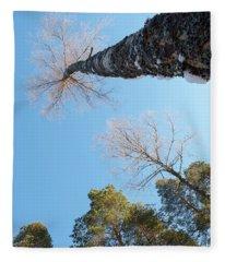 Treetops_the Sky Is The Limit  Fleece Blanket