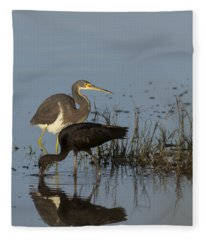 Tri-colored Heron And Glossy Ibis Fleece Blanket