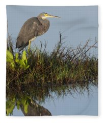 Tri-colored Heron And Reflection Fleece Blanket