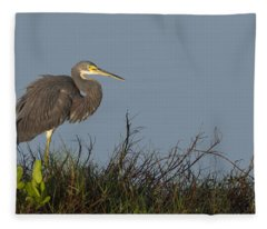 Tri-colored Heron In The Morning Light Fleece Blanket