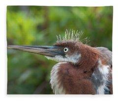 Tricolored Heron - Bad Hair Day Fleece Blanket