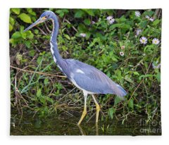 Tricolored Heron Hunting Fleece Blanket