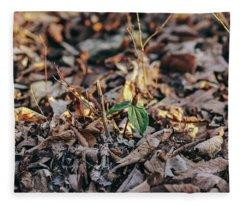 Trillium Blooming In Leaves On Forrest Floor Fleece Blanket