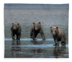 Triple Trouble - Alaska Fleece Blanket