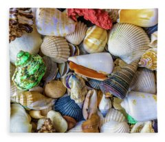 Tropical Beach Seashell Treasures 1550b Fleece Blanket