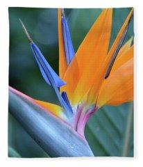 Tropical Brilliance Fleece Blanket