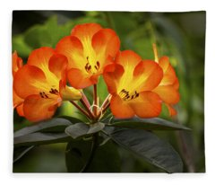 Tropical Rhododendron Fleece Blanket