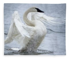 Trumpeter Swan - Misty Display 2 Fleece Blanket