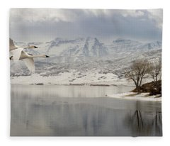 Trumpeter Swans Wintering At Deer Creek Fleece Blanket