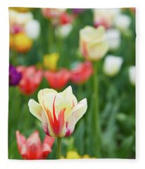 Tulip Bed Fleece Blanket