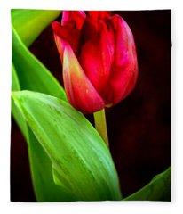 Tulip Caught In The Light Fleece Blanket