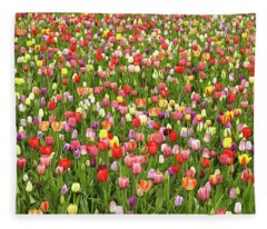 Tulip Field Fleece Blanket