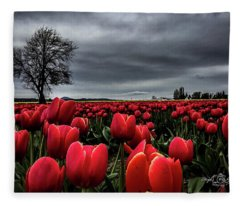 Tulip Fields Fleece Blanket