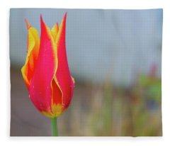 Tulip Fire Fleece Blanket