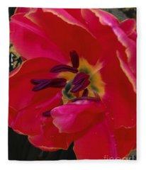 Tulip Portrait Fleece Blanket