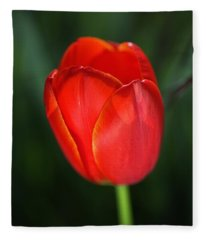 Tulip Red With A Hint Of Yellow Fleece Blanket