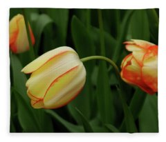 Nodding Tulips Fleece Blanket