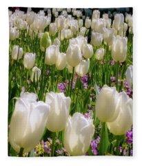 Tulips In White Fleece Blanket