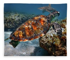 Turtle And Shark Swimming At Ocean Reef Park On Singer Island Florida Fleece Blanket