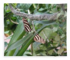 Twin Butterfly Striped Synchronicity Fleece Blanket