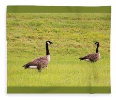 Two Canada Geese In Green Field Fleece Blanket