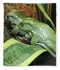 A Pair Of Frogs Fleece Blanket