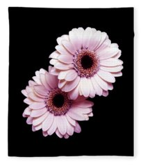 Two Gerberas On Black Fleece Blanket
