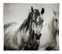 Two Horses In Black And White Fleece Blanket