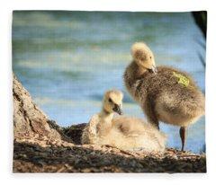 Two Little Goslings Fleece Blanket