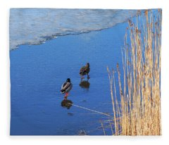 Two Mallards On Ice Fleece Blanket