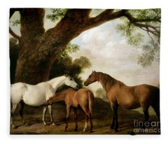 Two Mares And A Foal Fleece Blanket