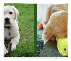 Two Puppies Two Yellow Labs Fleece Blanket