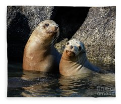 Two Quiet Sea Lions Fleece Blanket