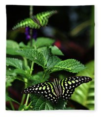Two Tailed Jay Butterflies- Graphium Agamemnon Fleece Blanket